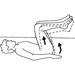 Lumbar Spine Dynamic Stability/Kinetic Control
