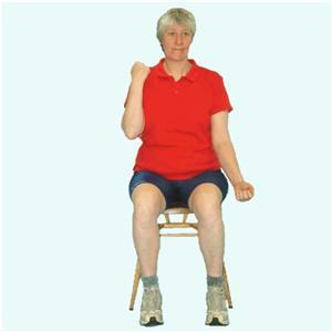 Cardiovascular and Flexibility Exercises
