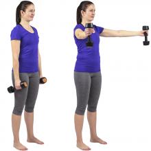 Fria vikter övningar